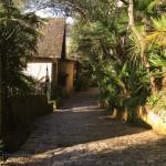 Along the cobbled path through the exotic garden.