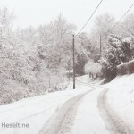Snowy lane.